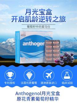 Anthogenol 月光宝盒 花青素葡萄籽精华 100粒 – Fujian Health & Beauty