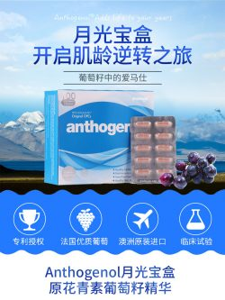 Anthogenol 月光宝盒 花青素葡萄籽精华 100粒 – Chinco 保健,美妆和个人护理商品