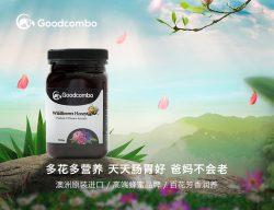 goodcombo 百花蜜500g 杀菌养胃 – Zhongguo 保健,美妆和个人护理商品